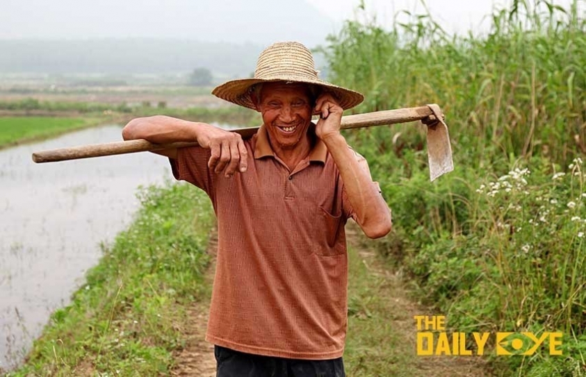 A Chinese Farming Project offers a Sustainable Future