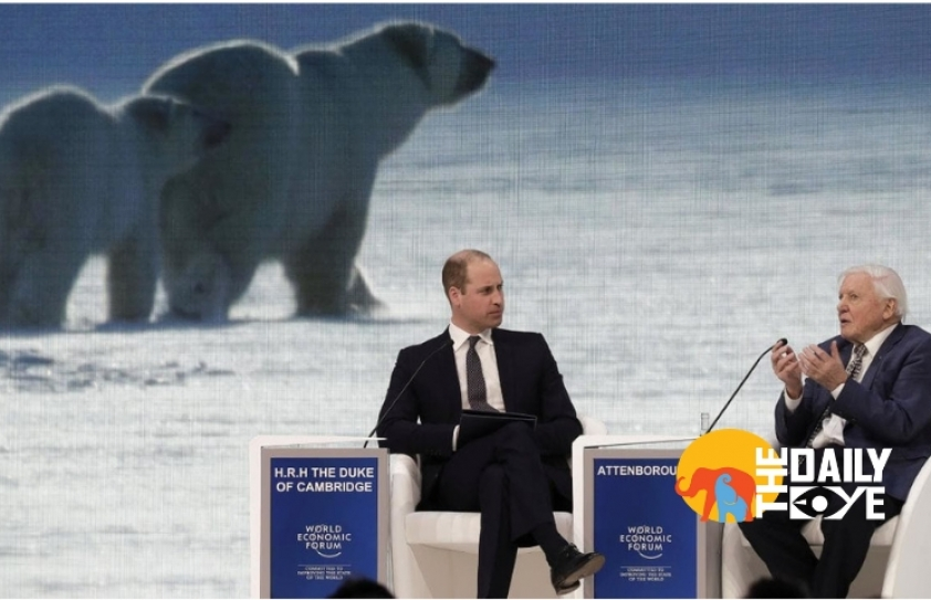 Davos 2019: Sir Attenborough and Prince William question World Leaders on the Environmental Crisis