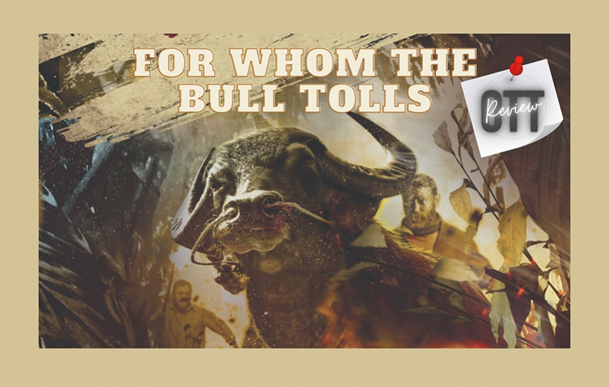 For whom the bull tolls